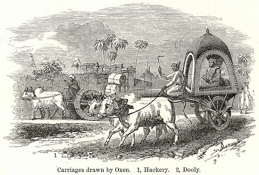 Carriages drawn by Oxen. 1, Hackery. 2, Dooly. Illustration for The World As It Is by George Chisholm (Blackie, 1885).