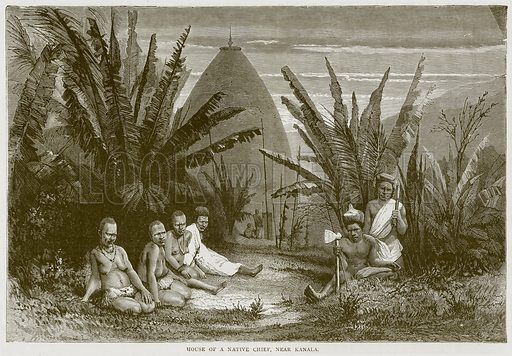 House of a Native Chief, near Kanala. Illustration from Illustrated Travels edited by H W Bates (Cassell, c 1880).