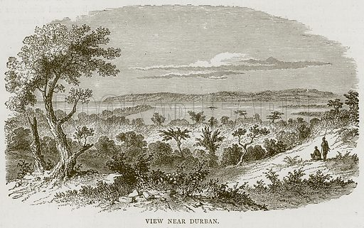 View near Durban. Illustration from Illustrated Travels edited by H W Bates (Cassell, c 1880).