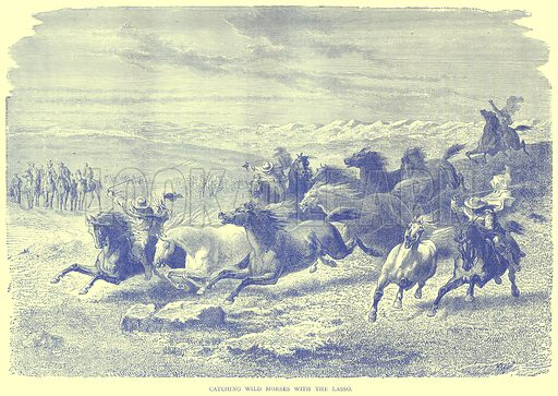 Catching Wild Horses with the Lasso. Illustration from Illustrated Travels edited by H W Bates (Cassell, c 1880).