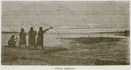 Turtle Shooting. Illustration from Illustrated Travels edited by HW Bates (Cassell, c 1880).