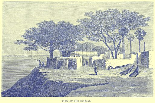 View on the Senegal. Illustration from Illustrated Travels edited by H W Bates (Cassell, c 1880).