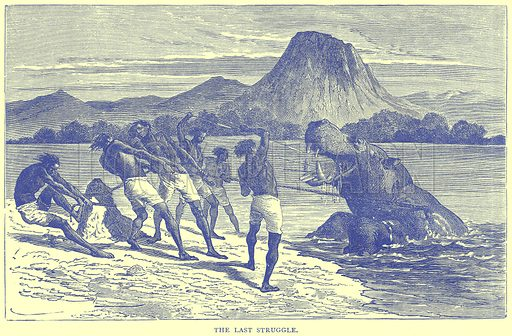 The Last Struggle. Illustration from Illustrated Travels edited by H W Bates (Cassell, c 1880).