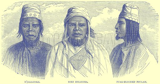 D'Jallonke. Sori Ibrahima. Pure-Blooded Foulah. Illustration from Illustrated Travels edited by H W Bates (Cassell, c 1880).