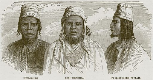 D'Jallonke. Sori Ibrahima. Pure-Blooded Foulah. Illustration from Illustrated Travels edited by HW Bates (Cassell, c 1880).