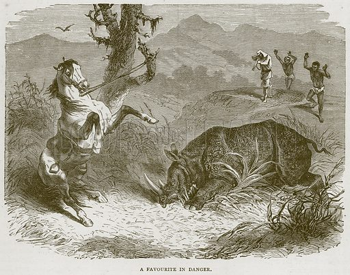 A Favourite in Danger. Illustration from Illustrated Travels edited by H W Bates (Cassell, c 1880).