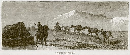 A Team of Ponies. Illustration from Illustrated Travels edited by H W Bates (Cassell, c 1880).
