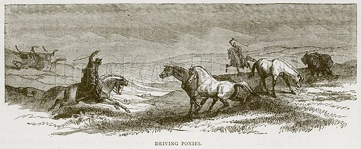 Driving Ponies. Illustration from Illustrated Travels edited by HW Bates (Cassell, c 1880).