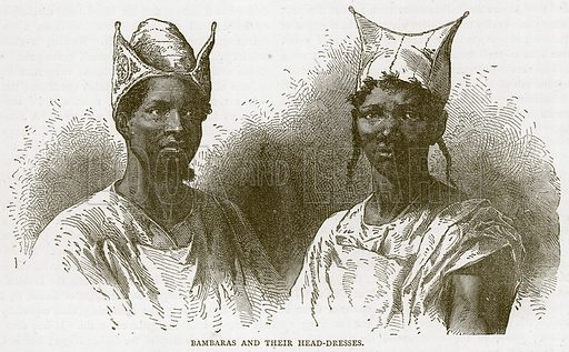 Bambaras and their Head-Dresses. Illustration from Illustrated Travels edited by HW Bates (Cassell, c 1880).