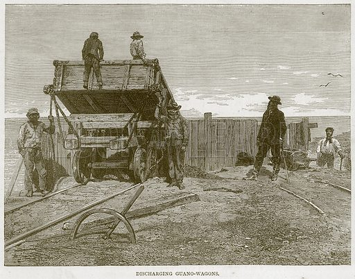 Discharging Guano-Wagons. Illustration from Illustrated Travels edited by H W Bates (Cassell, c 1880).