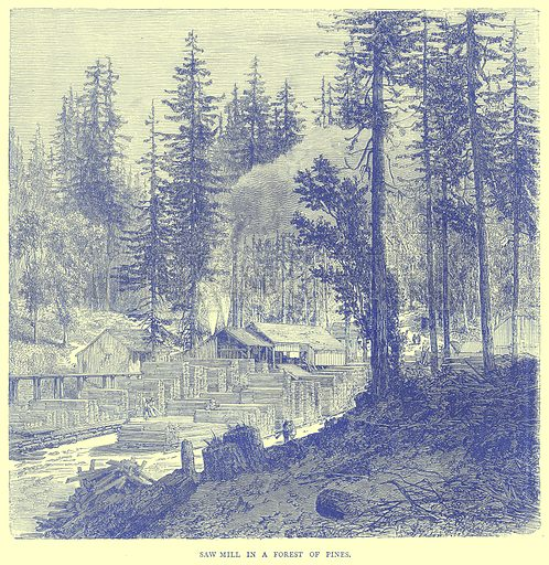 Saw Mill in a Forest of Pines. Illustration from Illustrated Travels edited by H W Bates (Cassell, c 1880).
