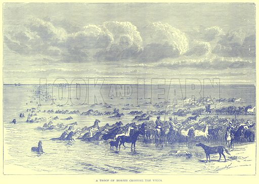 A Troop of Horses crossing the Volga. Illustration from Illustrated Travels edited by H W Bates (Cassell, c 1880).