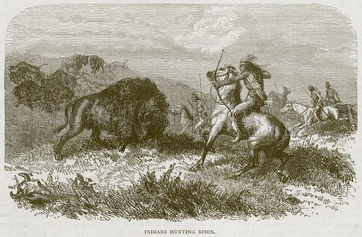 Indians Hunting Bison. Illustration from Illustrated Travels edited by H W Bates (Cassell, c 1880).