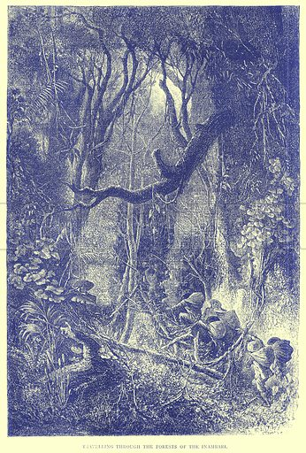 Travelling through the Forests of the Inambari. Illustration from Illustrated Travels edited by H W Bates (Cassell, c 1880).