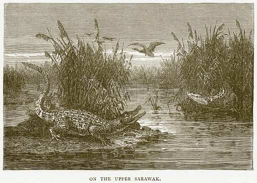 On the Upper Sarawak. Illustration from Illustrated Travels edited by HW Bates (Cassell, c 1880).