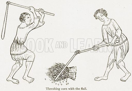 Threshing Corn with the Flail. Illustration from A Student's History of England by Samuel R Gardiner (Longmans, 1902).
