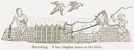 Harrowing. A Boy Slinging Stones at the Birds. Illustration from A Student's History of England by Samuel R Gardiner (Longmans, 1902).