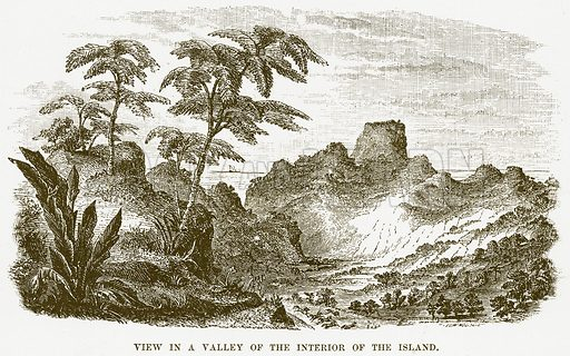 View in a Valley of the Interior of the Island. Illustration for Boy Travellers in Australasia by Thomas Knox (Harper, 1889).