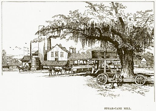 Sugar-Cane Mill. Illustration for Boy Travellers in Australasia by Thomas Knox (Harper, 1889).
