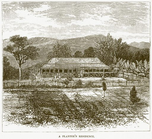 A Planter's Residence. Illustration for Boy Travellers in Australasia by Thomas Knox (Harper, 1889).