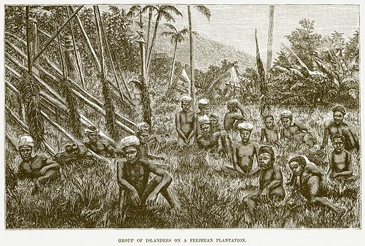 Group of Islanders on a Feejeean Plantation. Illustration for Boy Travellers in Australasia by Thomas Knox (Harper, 1889).