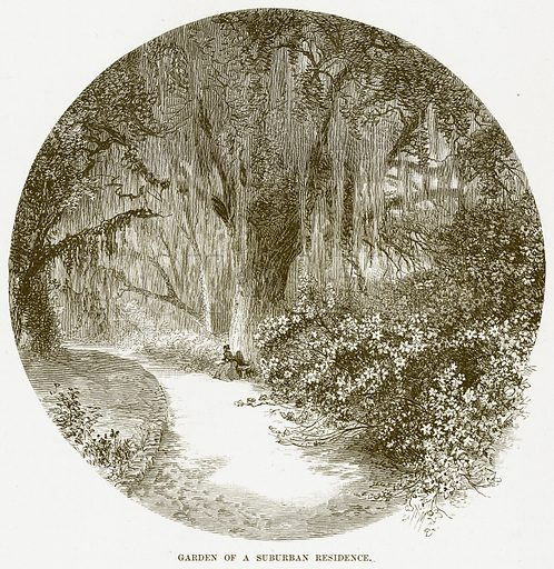Garden of a Suburban Residence. Illustration for Boy Travellers in Australasia by Thomas Knox (Harper, 1889).