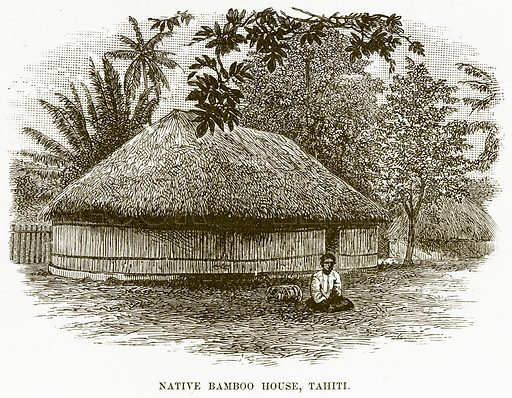Native Bamboo House, Tahiti. Illustration for Boy Travellers in Australasia by Thomas Knox (Harper, 1889).