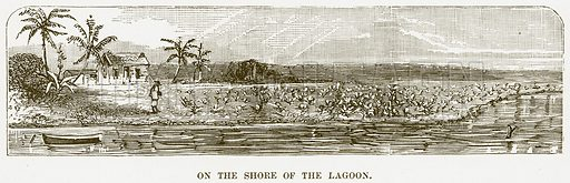 On the Shore of the Lagoon. Illustration for Boy Travellers in Australasia by Thomas Knox (Harper, 1889).
