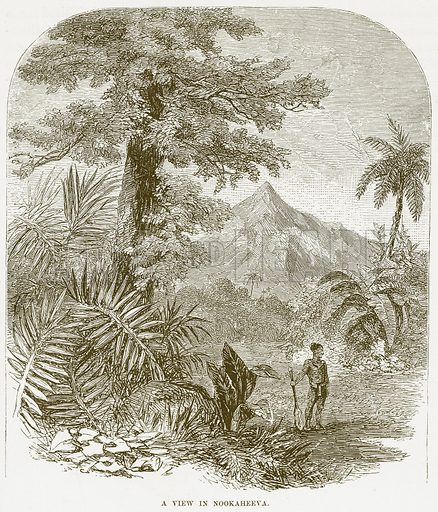 A View in Nookaheeva. Illustration for Boy Travellers in Australasia by Thomas Knox (Harper, 1889).