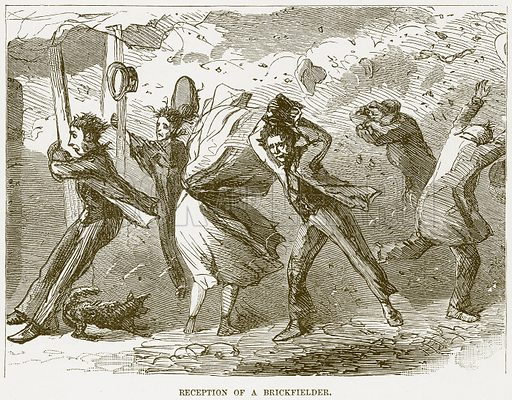 Reception of a Brickfielder. Illustration for Boy Travellers in Australasia by Thomas Knox (Harper, 1889).