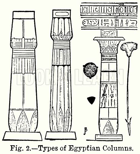 Types of Egyptian Columns. Illustration for Blackie's Modern Cyclopedia (1899).