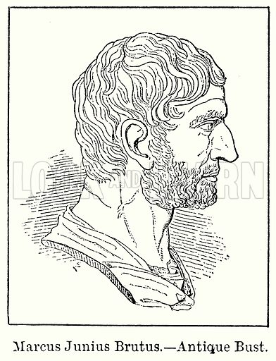 Marcus Junius Brutus.--Antique Bust. Illustration for Blackie's Modern Cyclopedia (1899).
