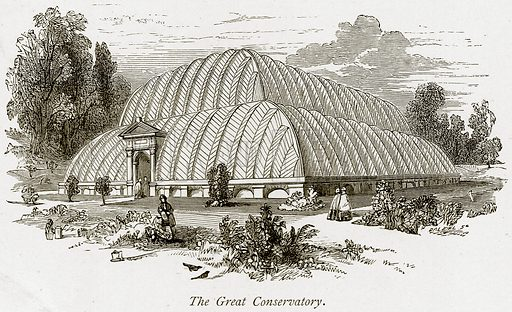 The Great Conservatory. Illustration from The Stately Homes of England by Llewellynn Jewitt and SC Hall (Virtue, 1877).