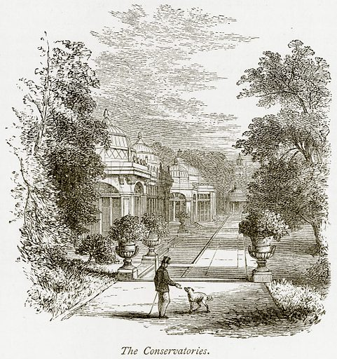 The Conservatories. Illustration from The Stately Homes of England by Llewellynn Jewitt and SC Hall (Virtue, 1877).