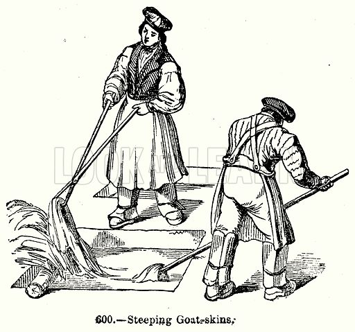 Steeping Goat-Skins. Illustration for Knight's Pictorial Gallery of Arts (London Printing and Publishing, c 1860).