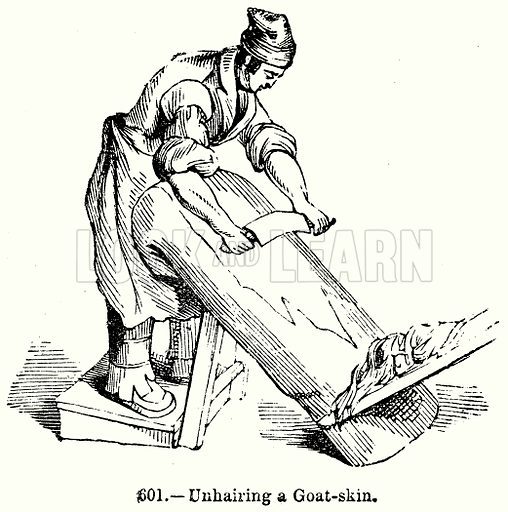 Unhairing a Goat-Skin. Illustration for Knight's Pictorial Gallery of Arts (London Printing and Publishing, c 1860).