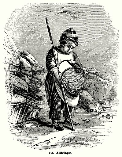 A Shrimper. Illustration for Knight's Pictorial Gallery of Arts (London Printing and Publishing, c 1860).