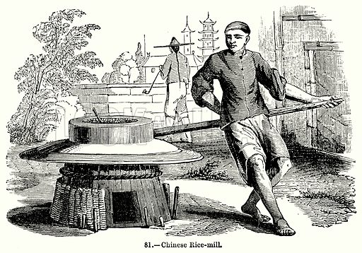 Chinese Rice-Mill. Illustration for Knight's Pictorial Gallery of Arts (London Printing and Publishing, c 1860).