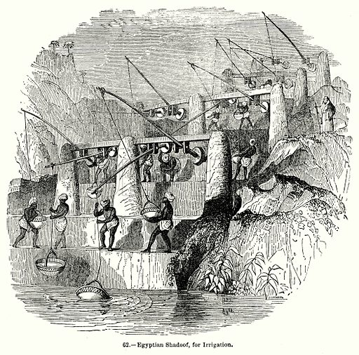 Egyptian Shadoof, for Irrigation. Illustration for Knight's Pictorial Gallery of Arts (London Printing and Publishing, c 1860).