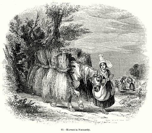 Harvest in Normandy. Illustration for Knight's Pictorial Gallery of Arts (London Printing and Publishing, c 1860).