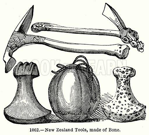 New Zealand Tools, Made of Bone. Illustration for Knight's Pictorial Gallery of Arts (London Printing and Publishing, c 1860).