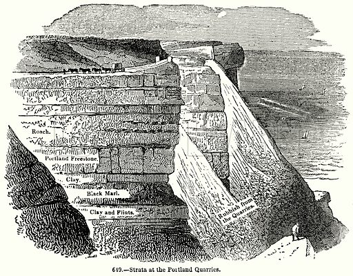 Strata at the Portland Quarries. Illustration for Knight's Pictorial Gallery of Arts (London Printing and Publishing, c 1860).