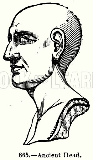 Ancient Head. Illustration for Knight's Pictorial Gallery of Arts (London Printing and Publishing, c 1860).