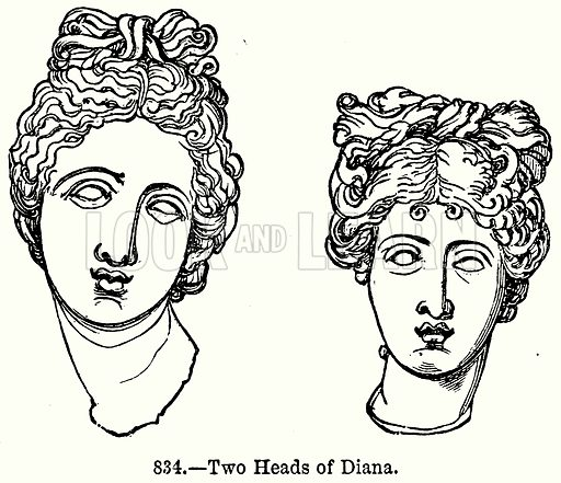 Two Heads of Diana. Illustration for Knight's Pictorial Gallery of Arts (London Printing and Publishing, c 1860).