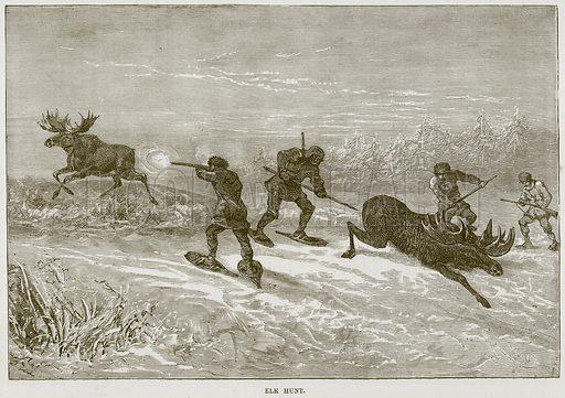 Elk Hunt. Illustration from Cassell's Natural History (Cassell, 1883).