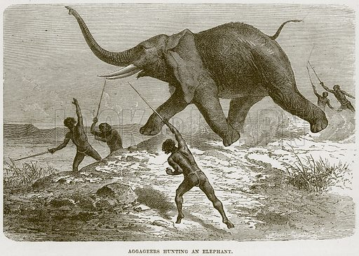 Aggageers Hunting an Elephant. Illustration from Cassell's Natural History (Cassell, 1883).
