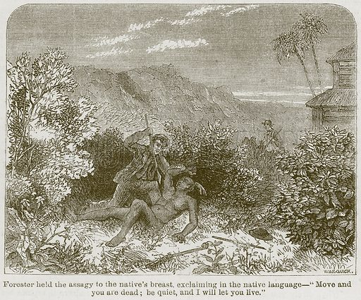 """Forester held the Assagy to the Native's Breast. Exclaiming in the Native Language – """"Move and you are Dead; be Quiet, and I will let you Live."""" Illustration from The Boy's Own Volume (Beeton, c 1860)."""