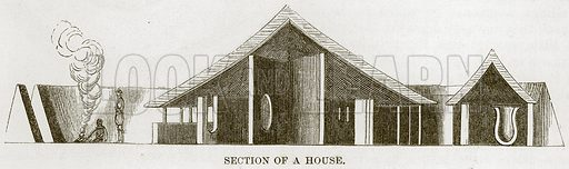 Section of a House. Illustration for The Natural History of Man by JG Wood (George Routledge, 1868).