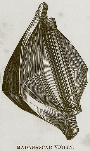 Madagascar Violin. Illustration for The Natural History of Man by JG Wood (George Routledge, 1868).