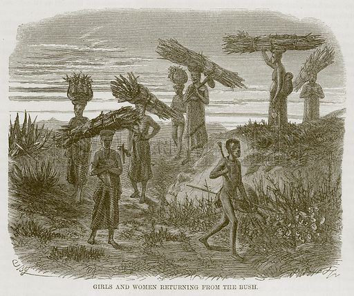 Girls and Women Returning from the Bush. Illustration for The Natural History of Man by JG Wood (George Routledge, 1868).